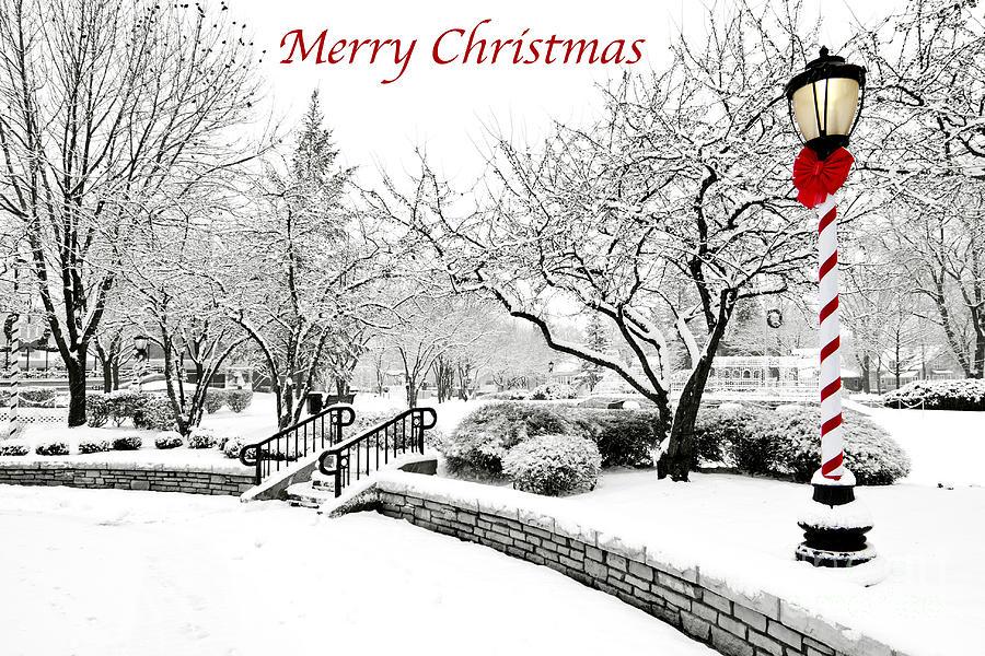 Merry Christmas by Patty Colabuono