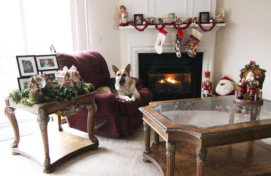Merry Photograph - Merry Christmas Tara by Linda Ritlinger