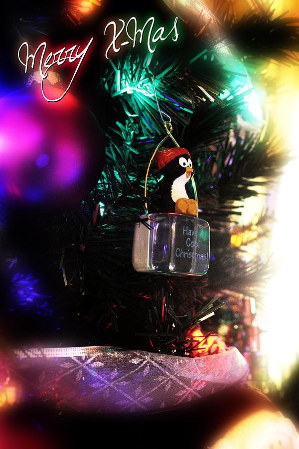 Merry Xmas Photograph - Merry X-mas by Adam LeCroy
