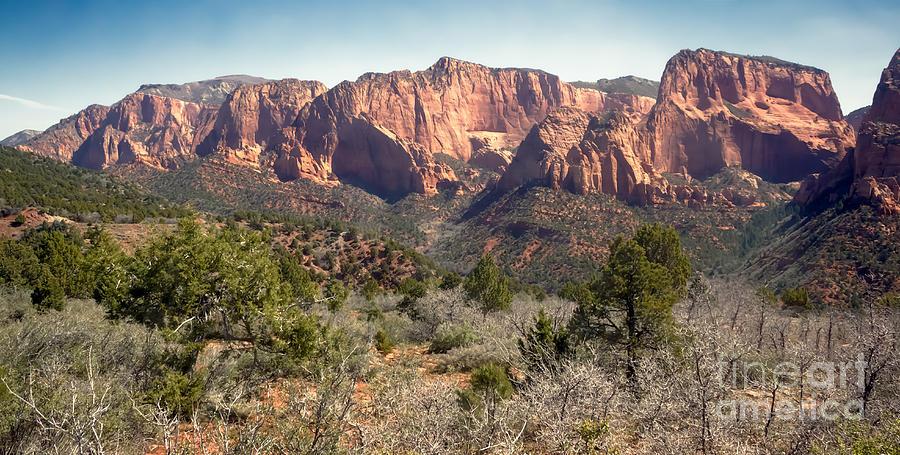 Zion National Parks Photograph - Mesa In Kolob by Robert Bales