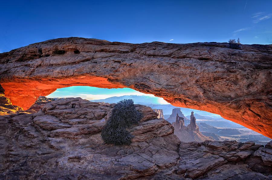 Mesa Morning by Bill Averette