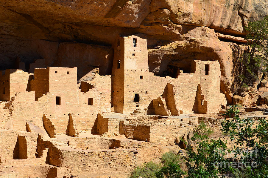 Mesa Verde Photograph - Mesa Verde National Park Cliff Palace Pueblo Anasazi Ruins by Shawn OBrien