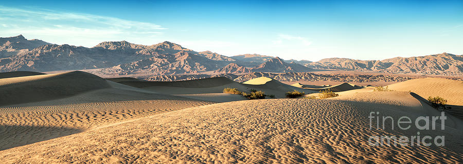 Valley Photograph - Mesquite Dunes Pano by Jane Rix