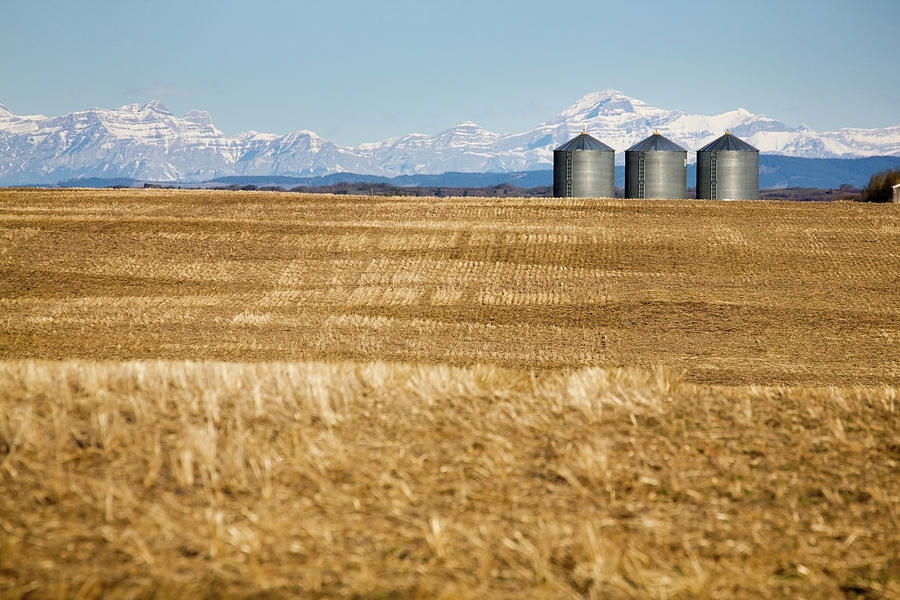 Metal Grain Bins In Stubble Field With Photograph by Michael Interisano / Design Pics