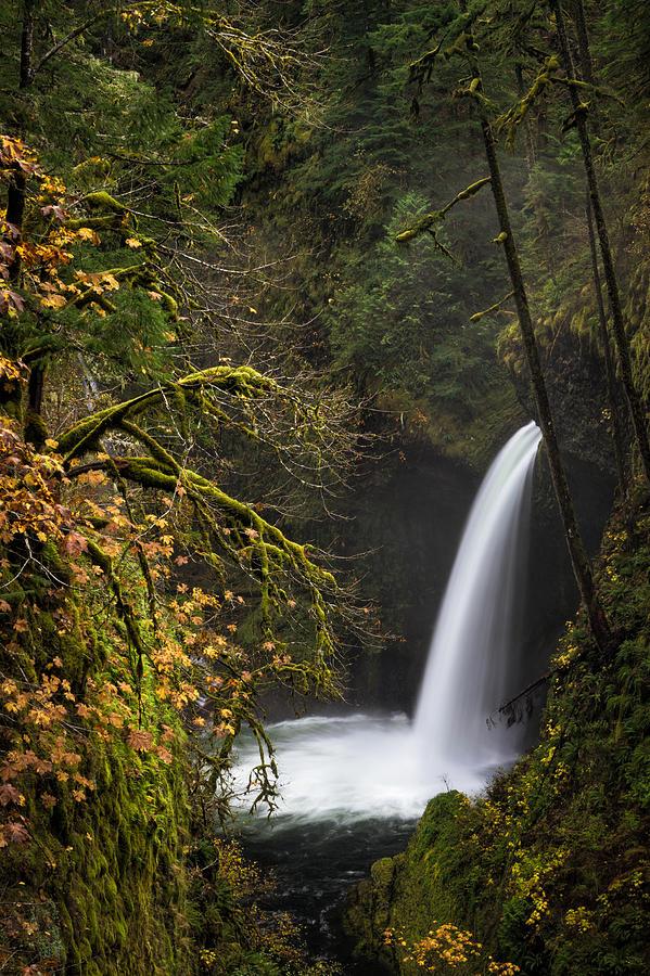 Columbia River Gorge Photograph - Metlako Falls by Brian Bonham