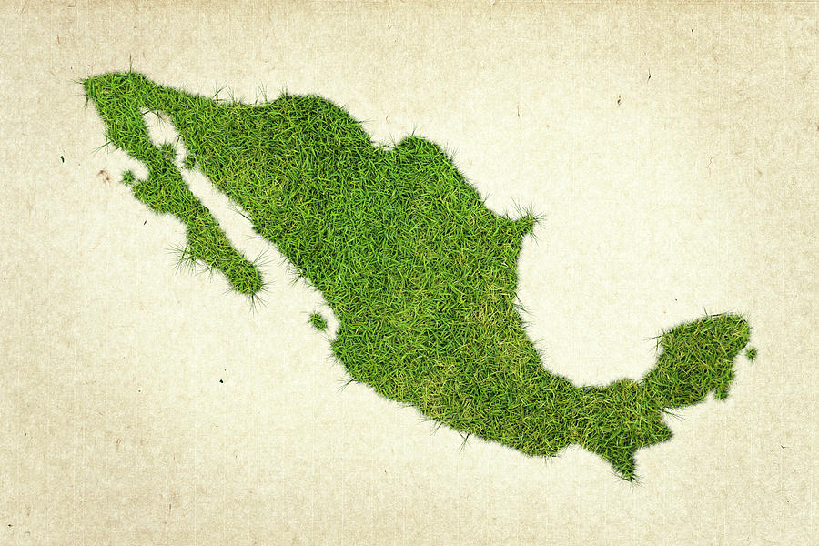 Map Of Mexico Photograph - Mexico Grass Map by Aged Pixel