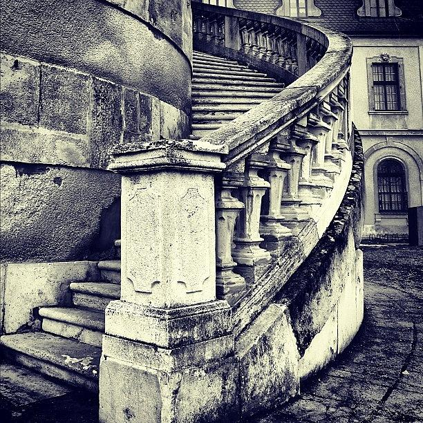 Lonely Photograph - #mgmarts #architecture #castle #steps by Marianna Mills