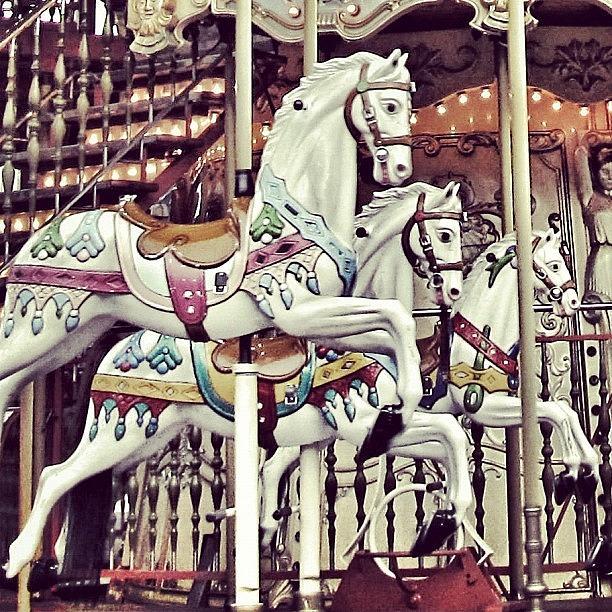Europe Photograph - #mgmarts #horse #bestogram #instahub by Marianna Mills