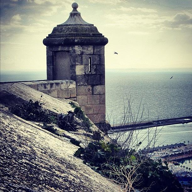 Life Photograph - #mgmarts #spain #alicante #view #nature by Marianna Mills