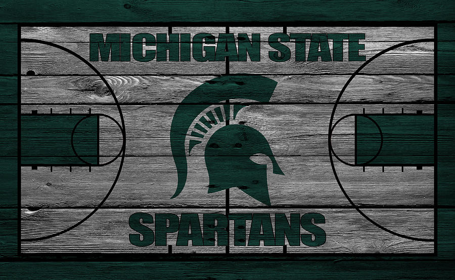 Spartans Photograph - Michigan State Spartans by Joe Hamilton