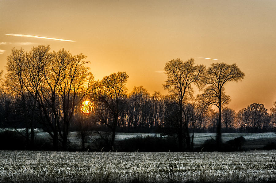 Bare Trees Photograph - Michigan Winter Sunset by Gej Jones