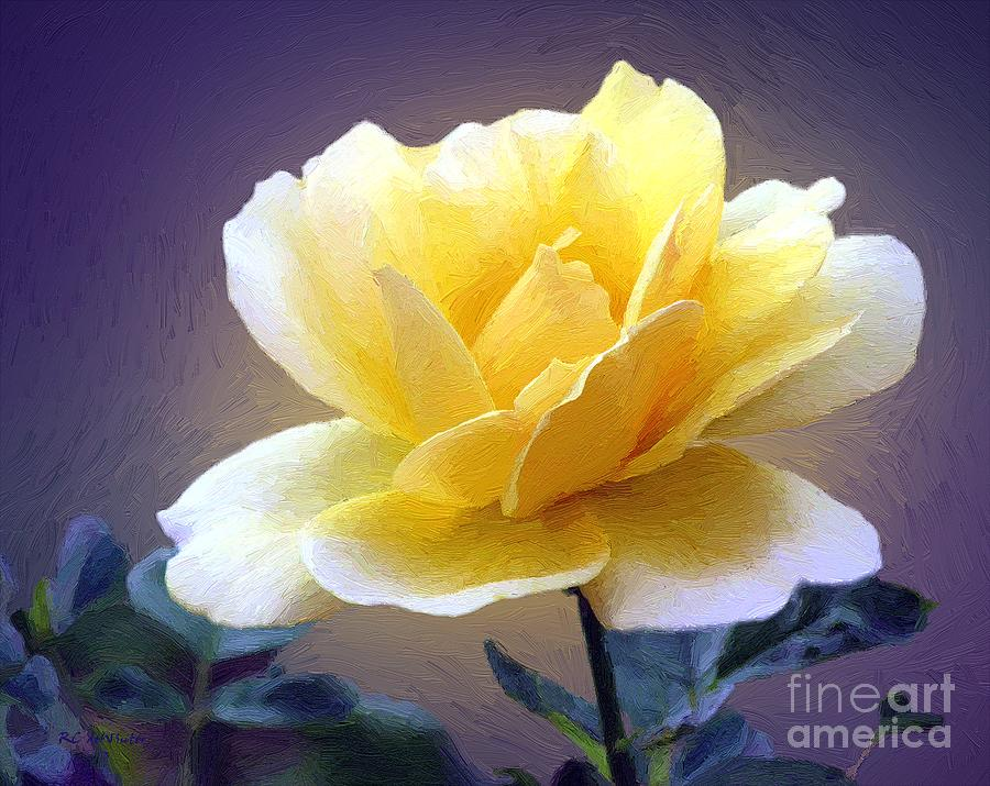 Rose Painting - Midas Kiss by RC deWinter
