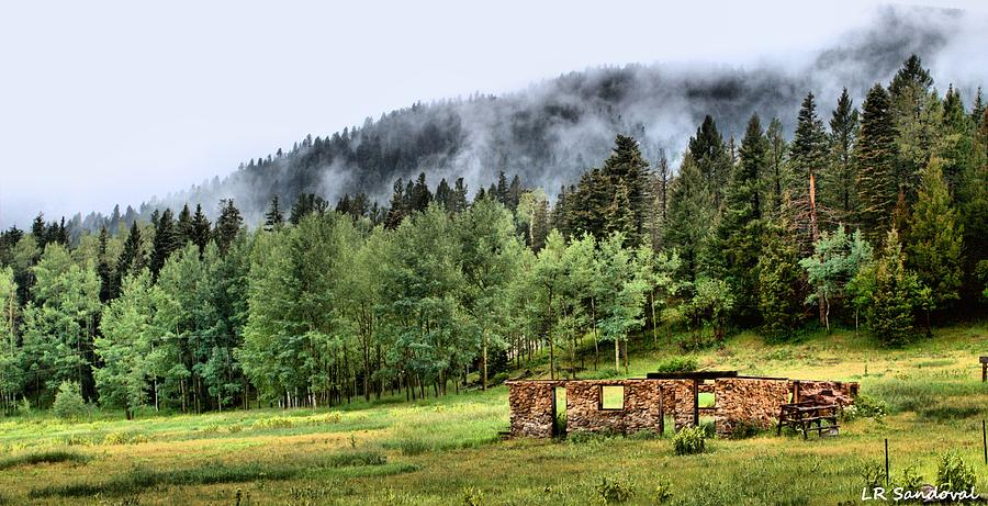 Landscapes Photograph - Midday Mist by Lena Sandoval-Stockley