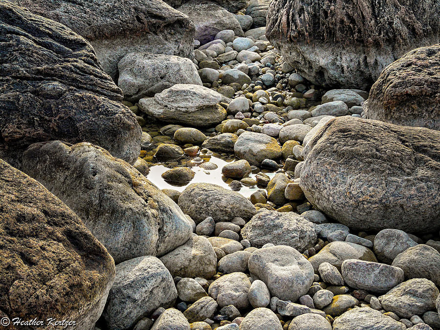 Water Photograph - Middle Cove Rocks by Heather Kertzer