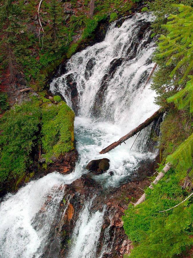 Water Photograph - Middle Of Red Blanket Falls by Teri Schuster