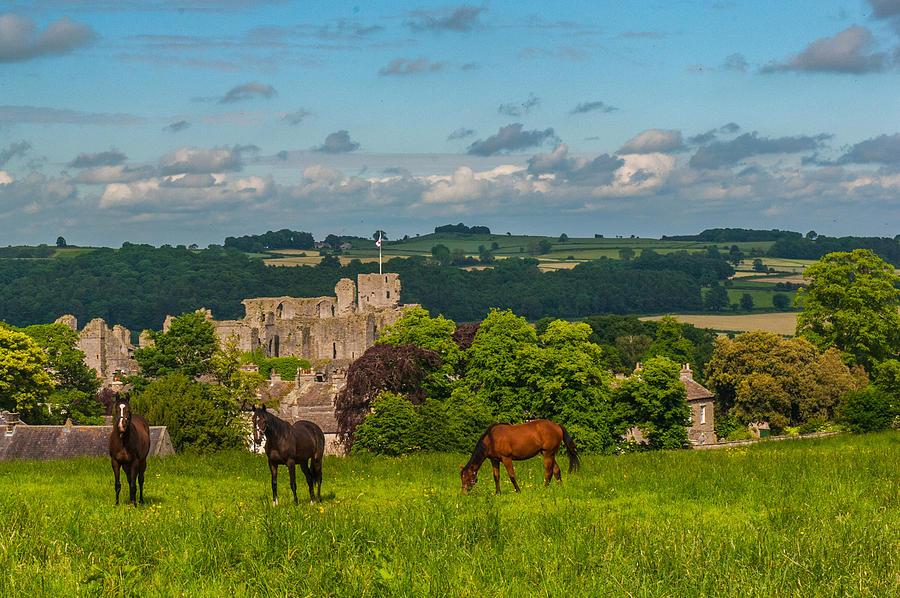 Middleham Castle Photograph - Middleham Castle by David Ross