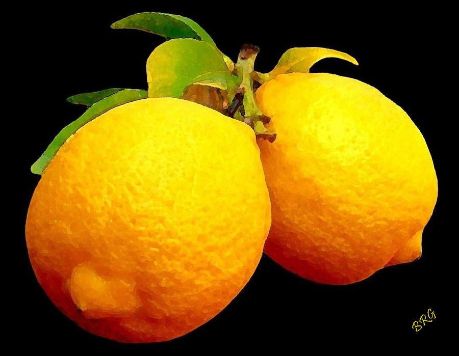 Lemon Photograph - Midnight Lemons by Ben and Raisa Gertsberg