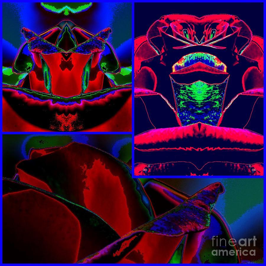 Rose Digital Art - Midnight Velvet by Lorles Lifestyles