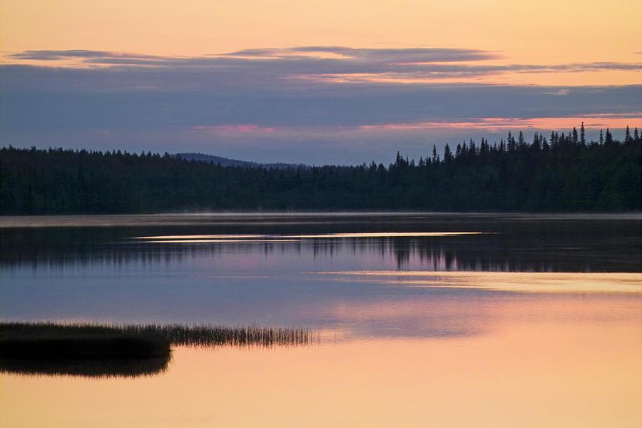 Water Photograph - Midsummer Nights Dream by Heiko Koehrer-Wagner