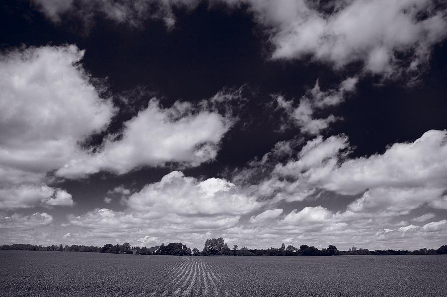 Cloud Photograph - Midwest Corn Field Bw by Steve Gadomski