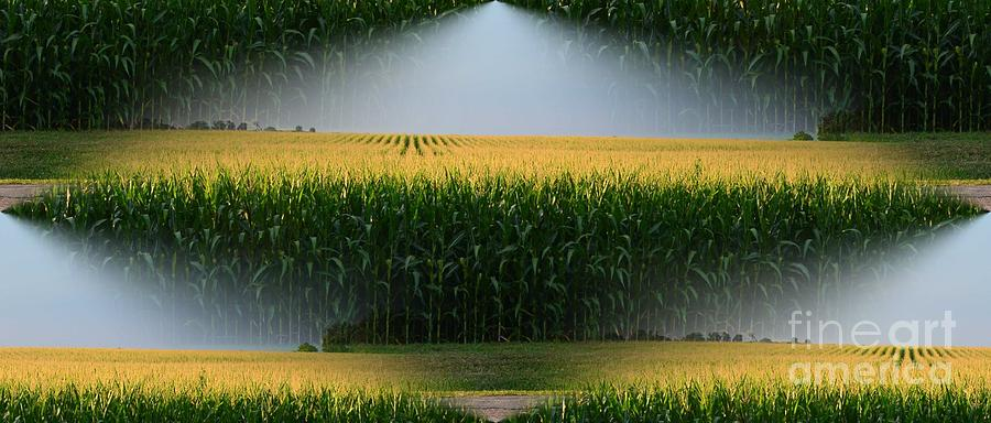 Logo Photograph - Midwest Gold by Luther Fine Art