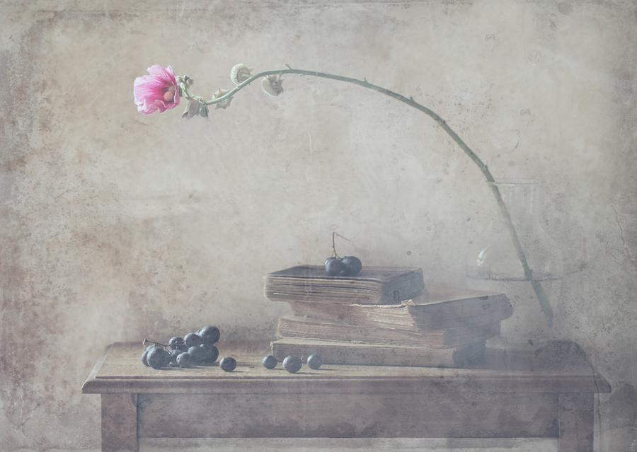 Still Life Photograph - Mild Morning Of October by Delphine Devos