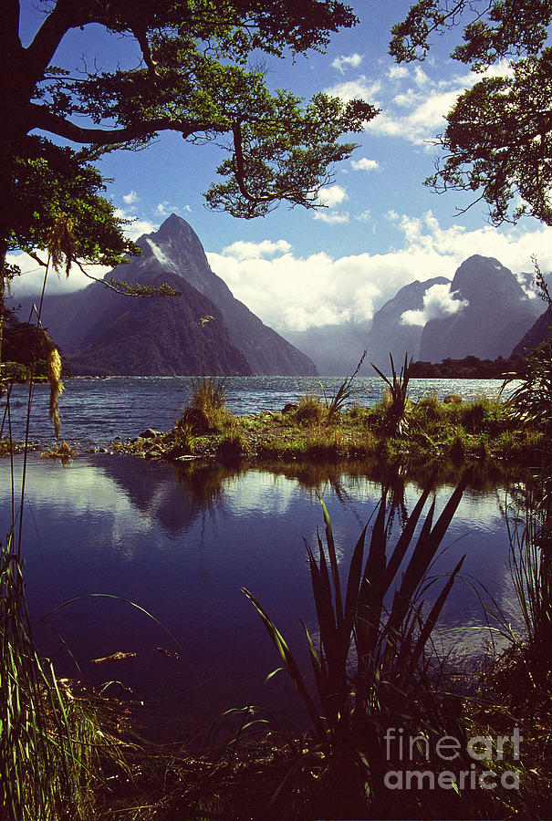 Landscape Photograph - Milford Sound In New Zealands Fiordland National Park by Alex Cassels