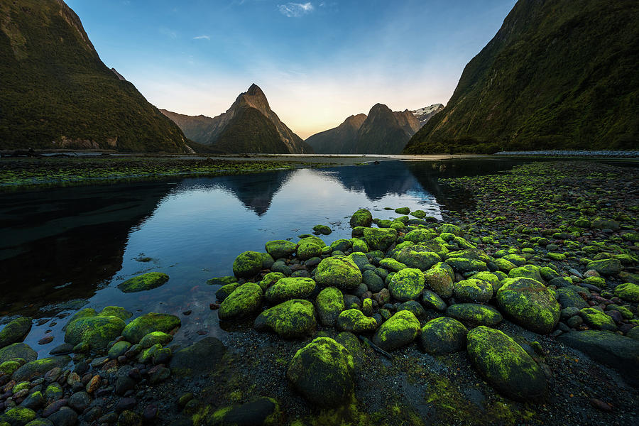 Milford Sound, New Zealand Photograph by Thanapol Marattana