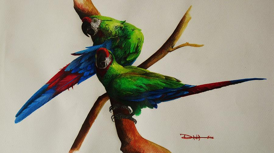 Paintings Painting - Military Macaws by Dana Newman