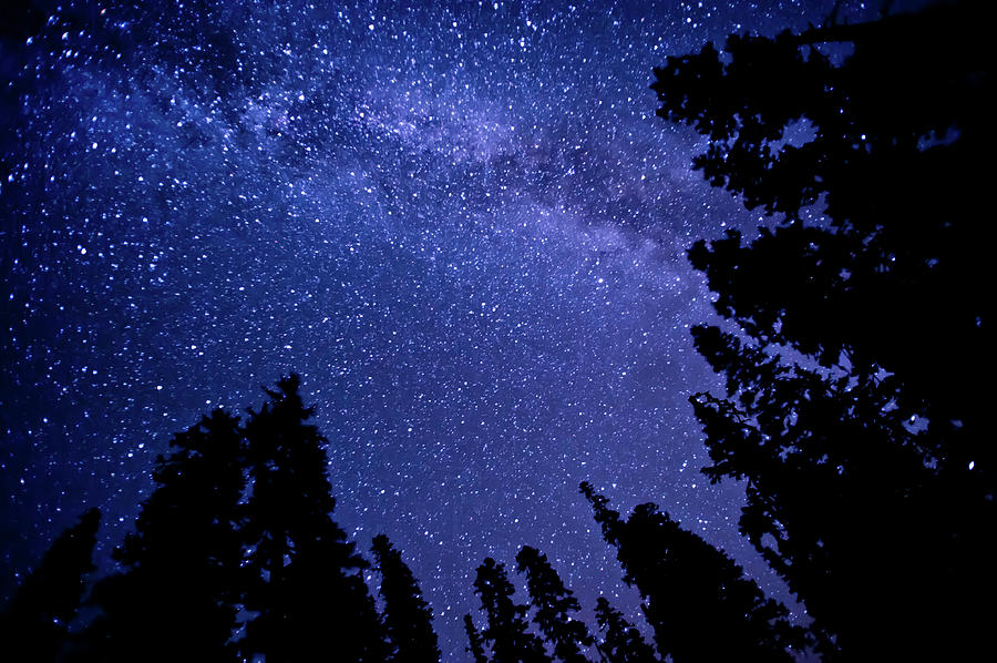 Milky Way Photograph by Lynn Midford Photography