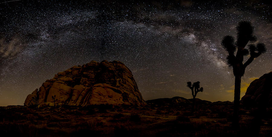 Astrophotography Photograph - Milky Way Over Joshua Tree by Peter Tellone