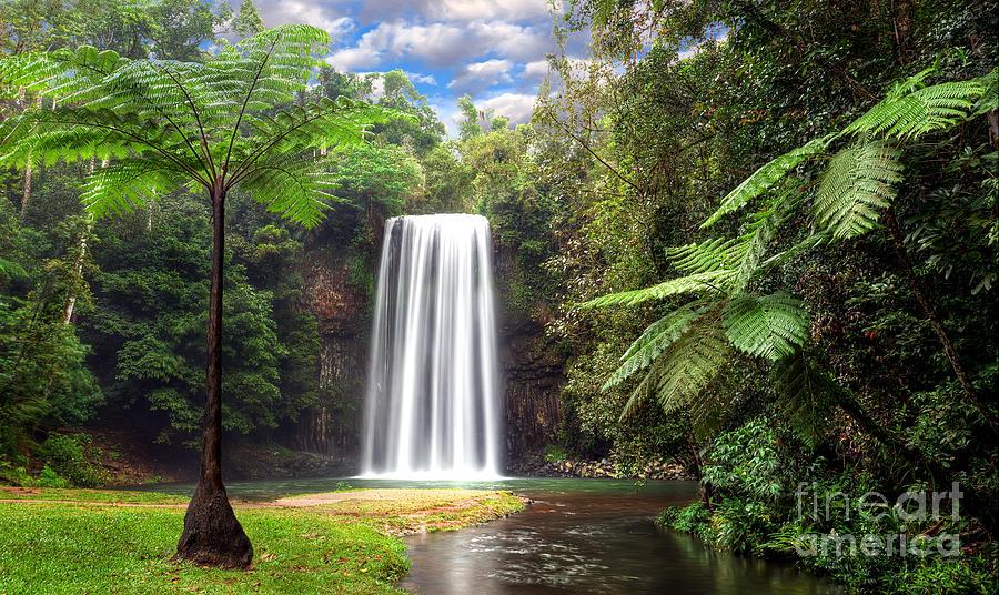 Milla Milla Falls Digital Art - Milla Milla Falls by Shannon Rogers