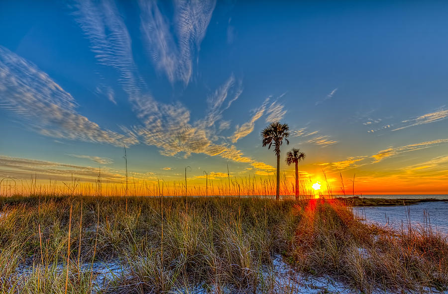 Sea Oats Photograph - Miller Time by Marvin Spates