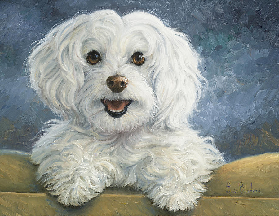Dog Painting - Mimi by Lucie Bilodeau