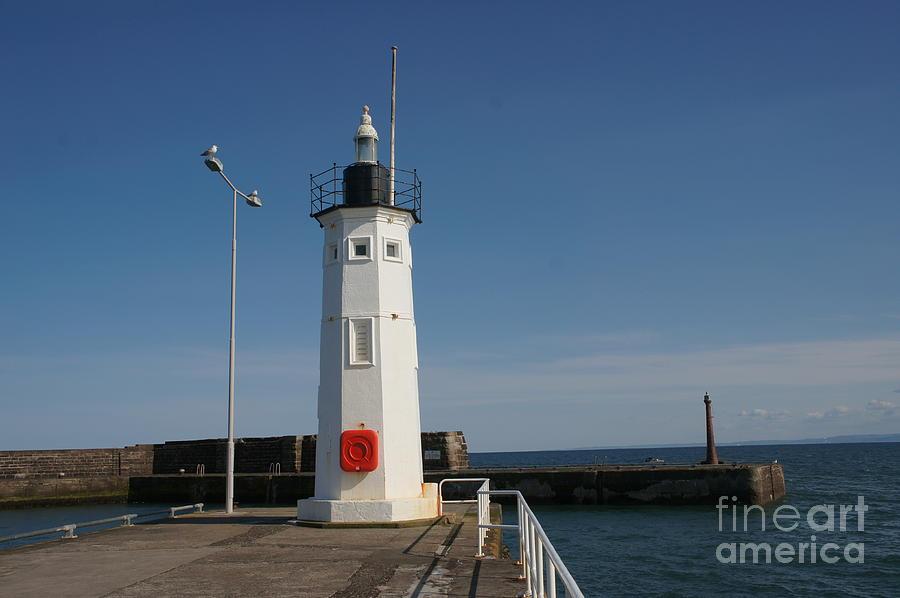 Lighthouse Photograph - Mimicking A Lighthouse by Elena Perelman