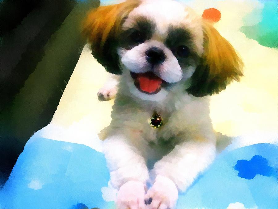Dog Digital Art - Mimis Smile by Tony Chong