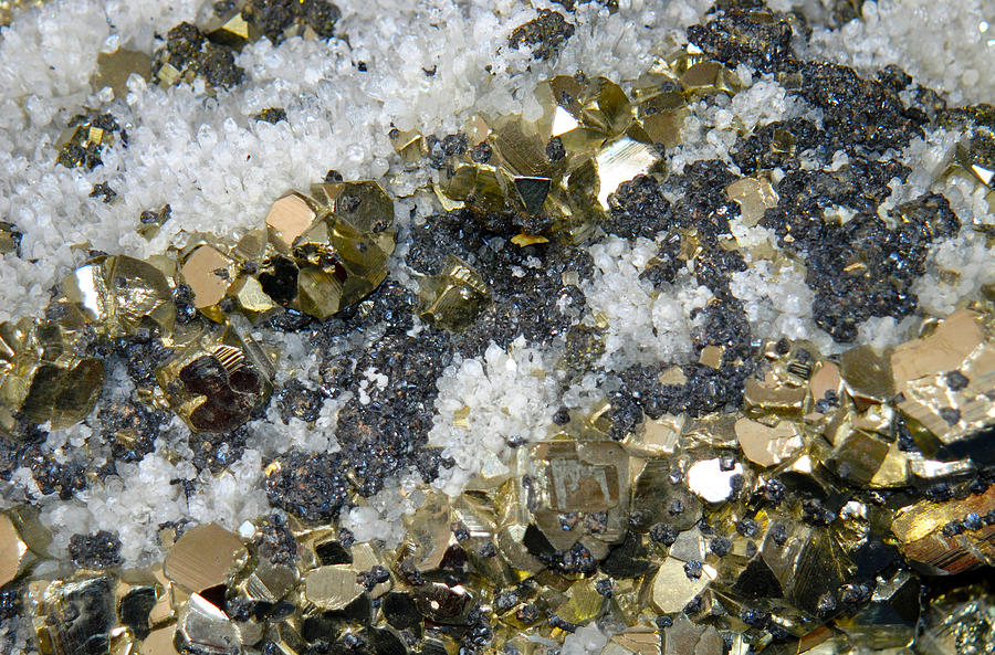 Pyrite Photograph - Minerals 4 by T C Brown