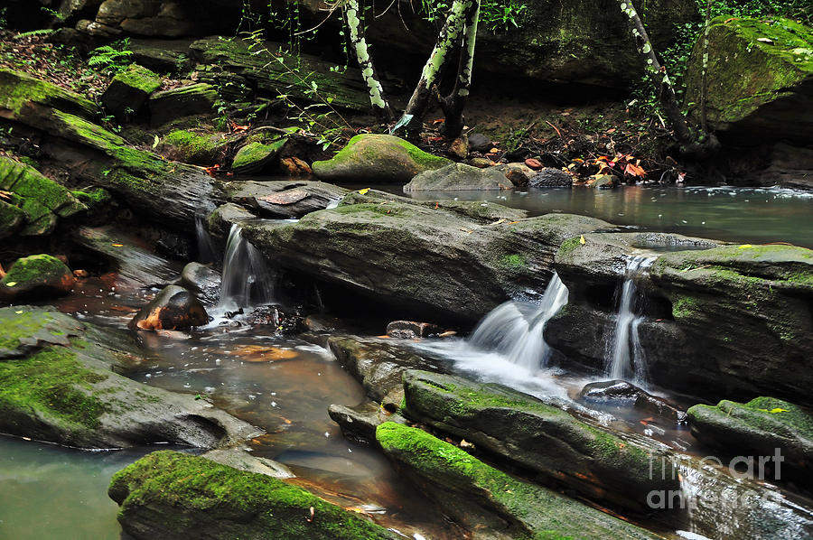 Creek Photograph - Mini Waterfalls by Kaye Menner