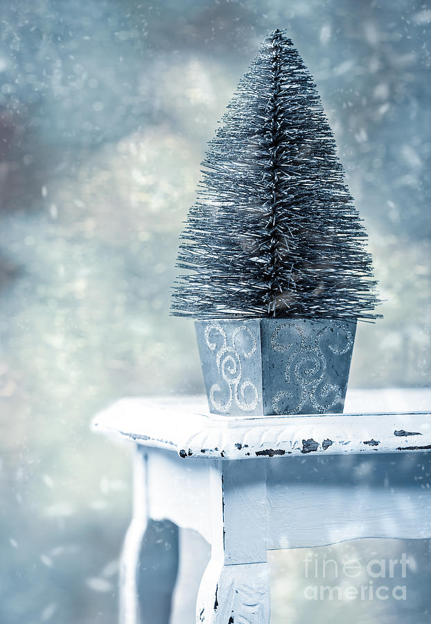 Christmas Photograph - Miniature Christmas Tree by Amanda Elwell