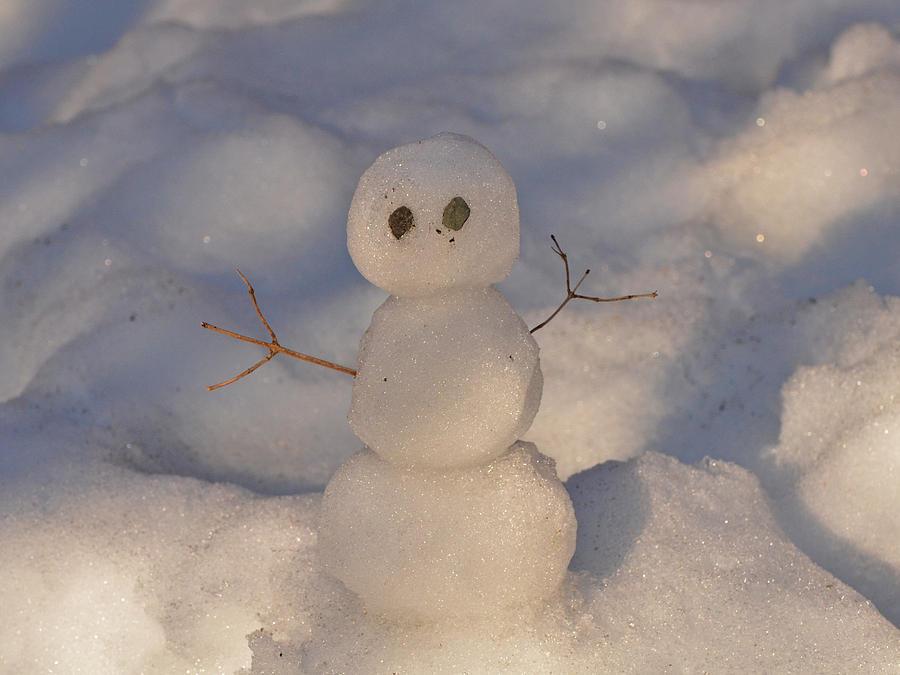 Snowman Photograph - Miniature Snowman Landscape by Nancy Landry