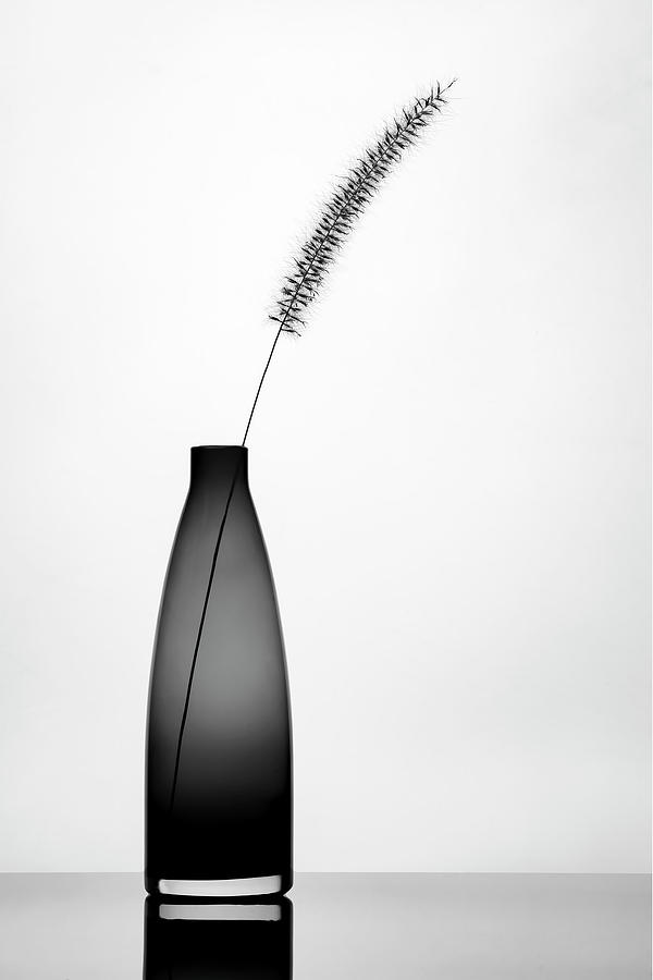 Graphic Photograph - Minimalist by E.amer