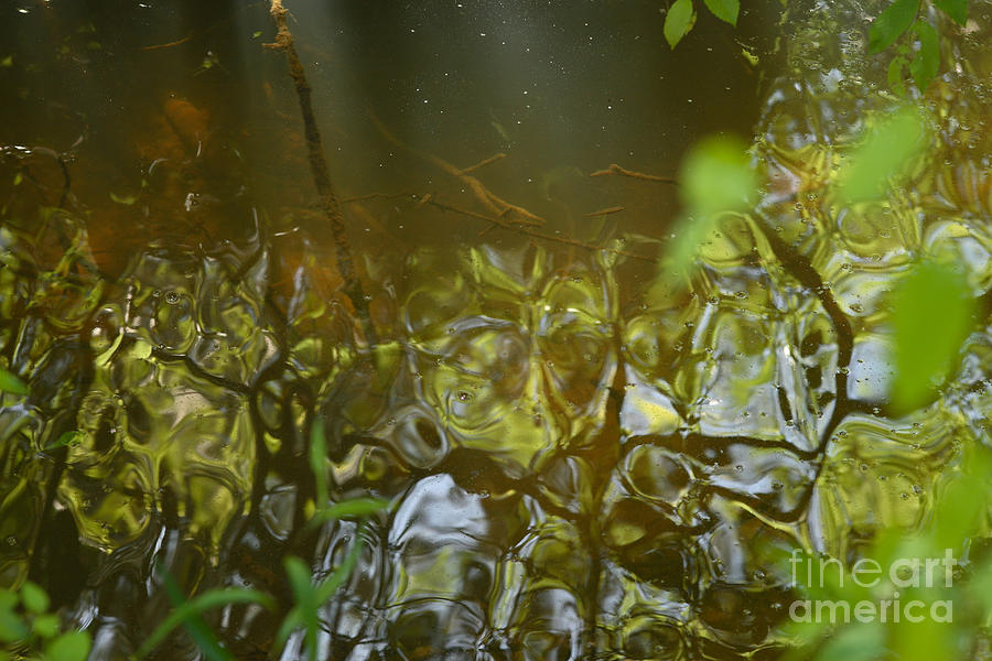 Creek Photograph - Minnow Creek by Russell Christie