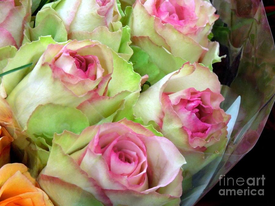 Mint Julep Bouquet Photograph By Renee Trenholm