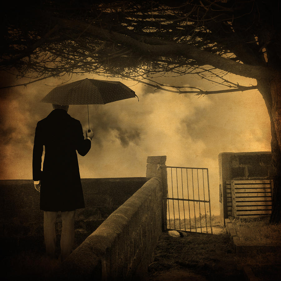 Rain Photograph - Miracle by Taylan Apukovska