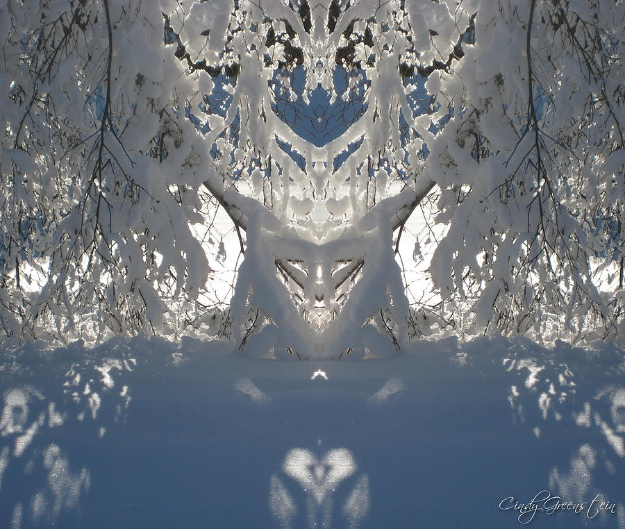 Mirror Of Snow  Photograph by Cindy Greenstein