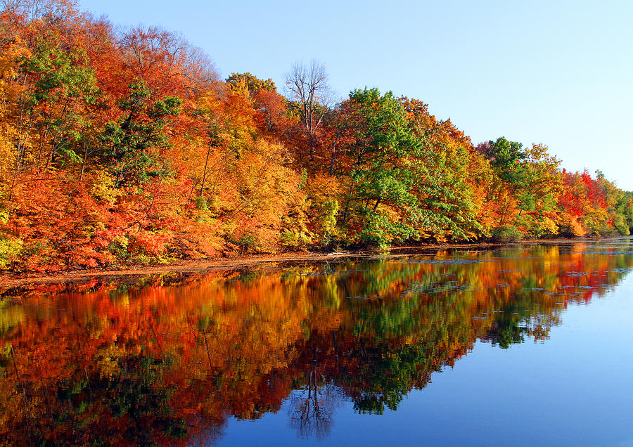 Fall Photograph - Mirrored Palette by James Hammen