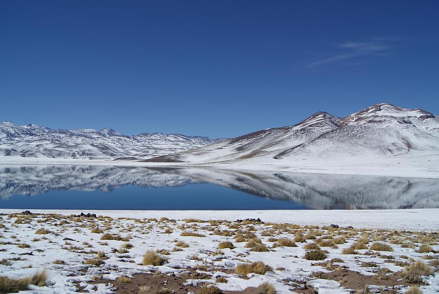 Miscanti Lagoon Photograph by Lelia Valduga