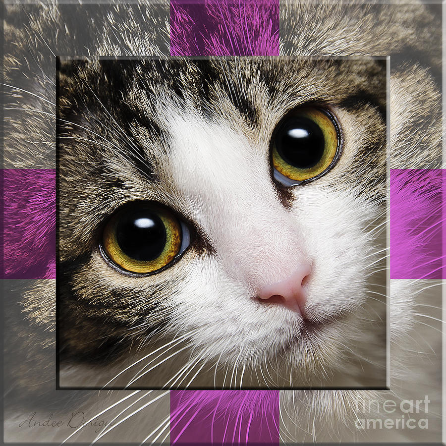 Abstract Photograph - Miss Tilly The Gift 1 by Andee Design