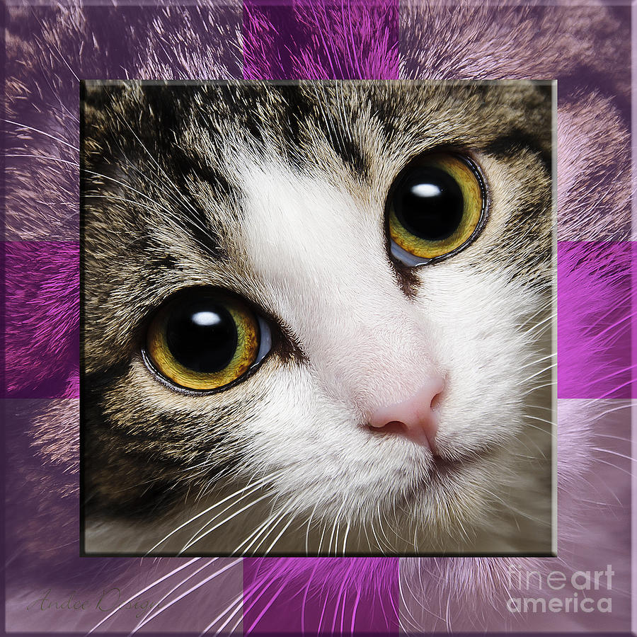 Abstract Photograph - Miss Tilly The Gift 2 by Andee Design