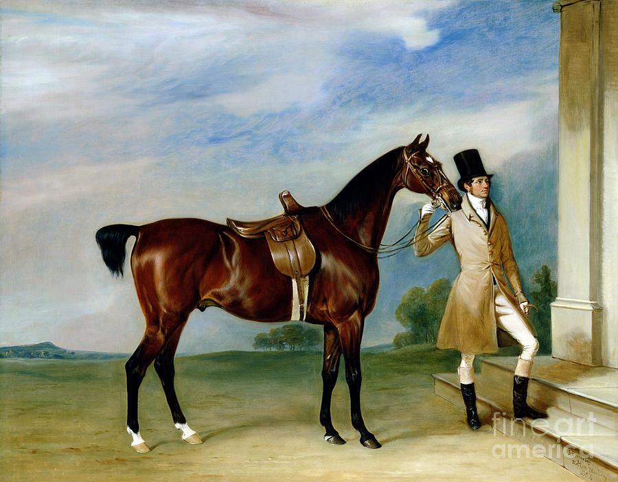 Miss Villebois Bay Hunter Held By A Groom Painting by John E Ferneley